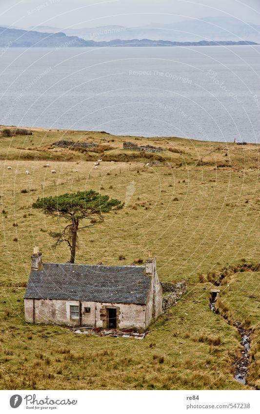 Vom Netz getrennt. Wohnung Haus Umwelt Natur Horizont Frühling Fjord Schottland Menschenleer blau grün türkis ruhig Einsamkeit Farbfoto Außenaufnahme