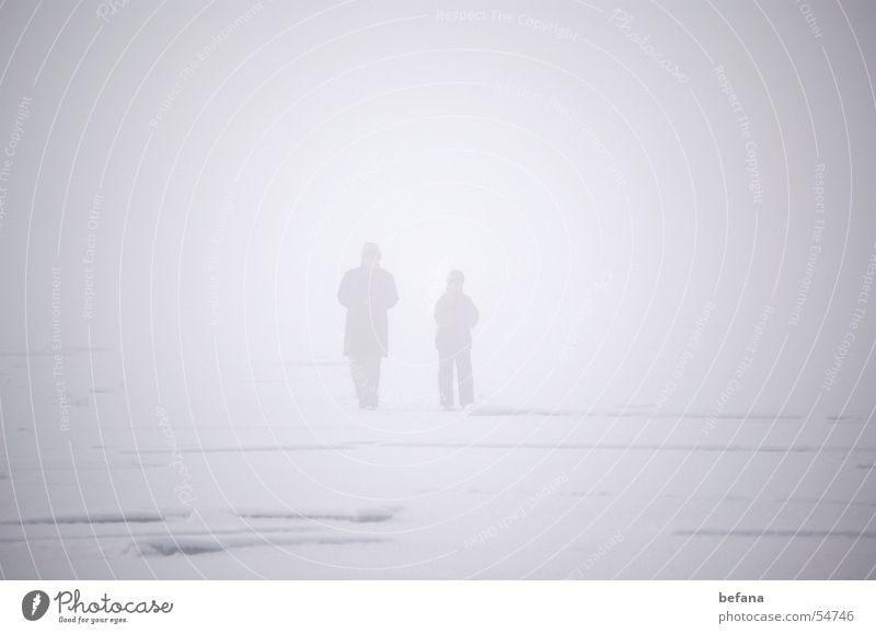 Lost Eis planen Nebel Chiemsee