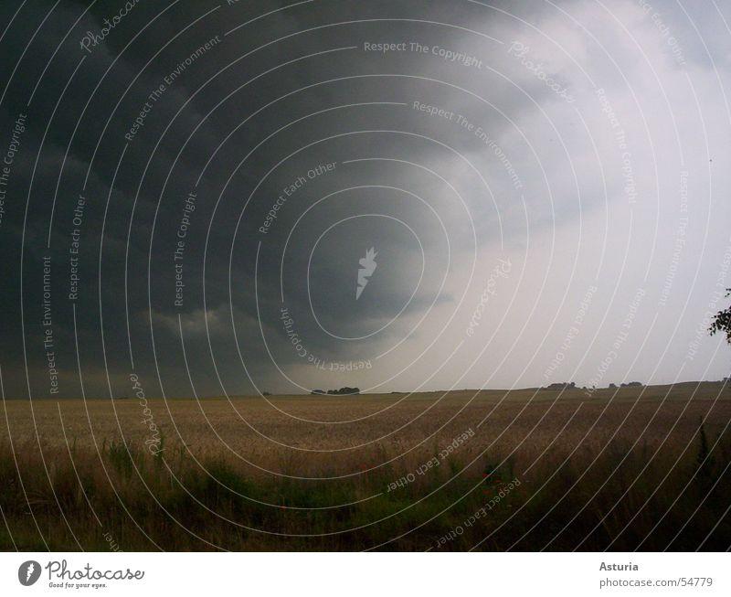 watch out, it's coming! Sturm grau dunkel Donnern Feld Dorf Luft kalt schwarz weiß Wolken gefährlich Umwelt Geschwindigkeit faszinierend Gewitter Regen Wind