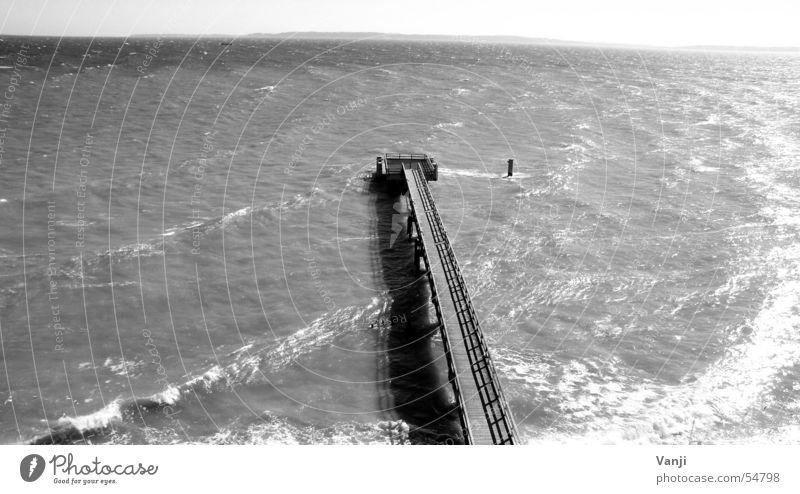 Sackgasse Meer Steg Holz Sassnitz Endstation Wellen Rügen Ferien & Urlaub & Reisen Grenze Brücke Hafen Wasser Ostsee Schwarzweißfoto überblicken Ende Insel
