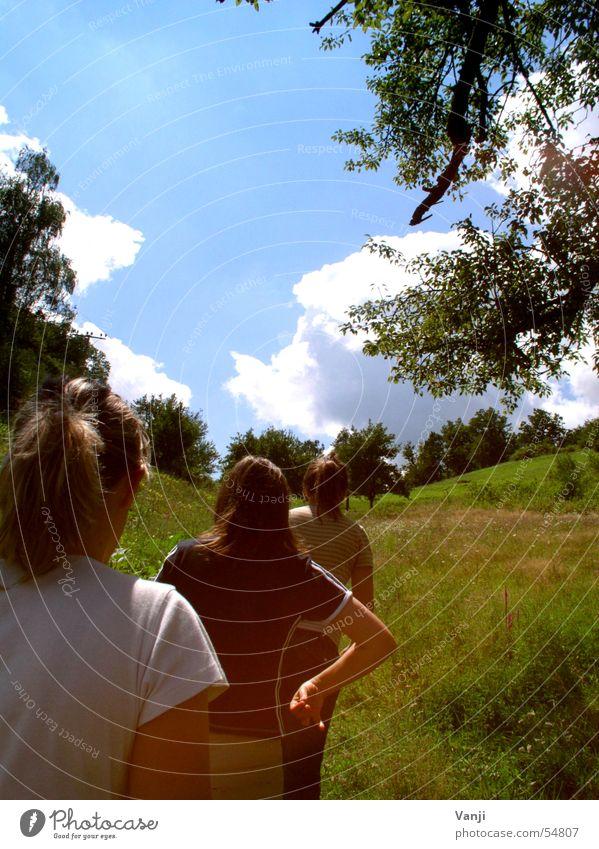 die drei Frau Natur Himmel Baum Sonne grün blau Sommer Wolken Wiese Freiheit laufen frei 3 Ausflug Hügel