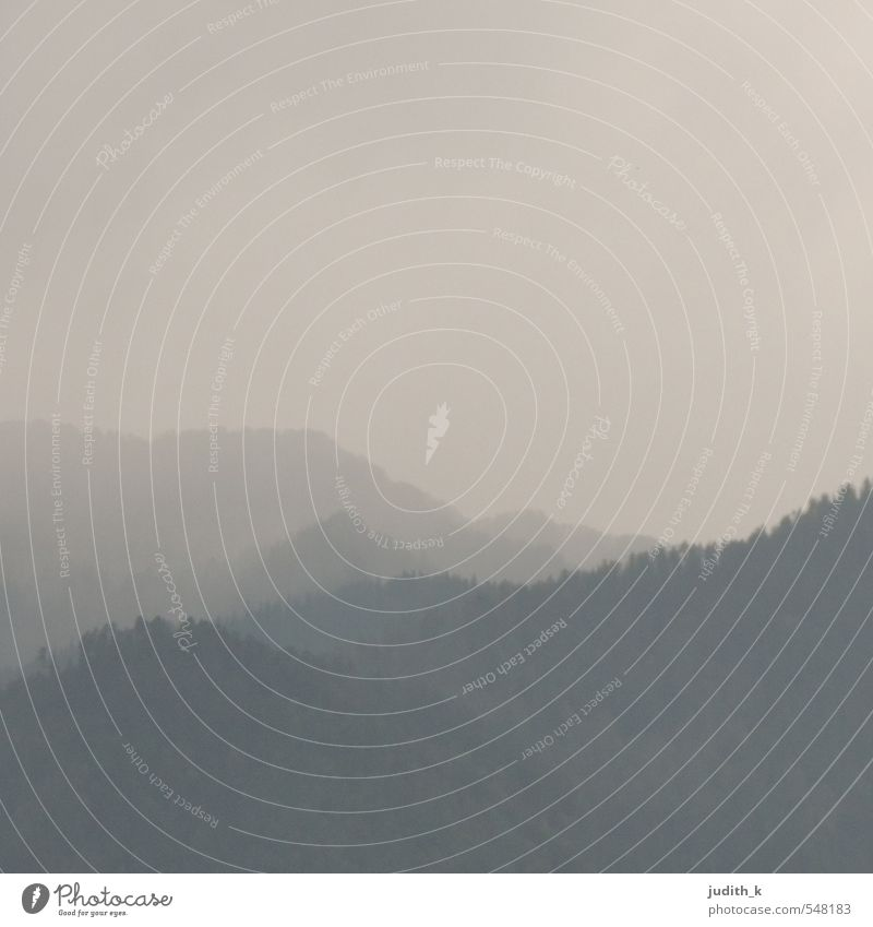 Nebel im Himalaya... Himmel Ferien & Urlaub & Reisen Landschaft schwarz Ferne Wald dunkel Berge u. Gebirge grau Felsen Stimmung rosa Regen wandern Ausflug