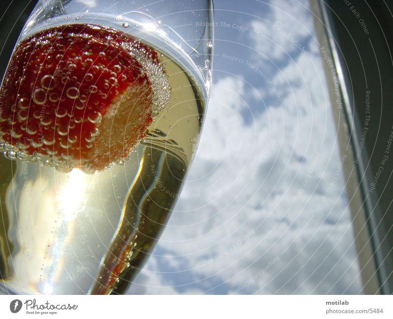 erdbeere im Sektglas Fototechnik Erdbeeren Glas Surrealismus Sonne Lichterscheinung