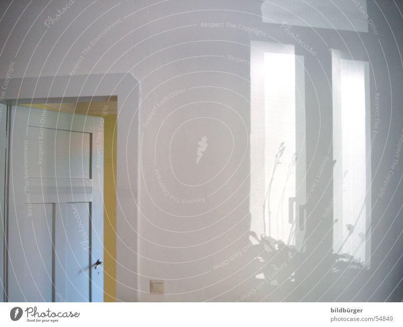 fenster light Pflanze Sonne Ferne Leben Fenster hell Tür Zufriedenheit Raum Wohnung Platz leer Lifestyle Häusliches Leben Fantasygeschichte