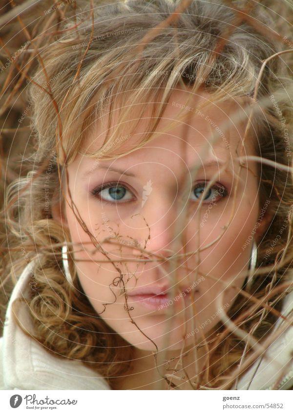 Gestrüpp - Püpp(i) Frau blond Model Porträt Sträucher Gesicht babe Auge Mund Nase Haare & Frisuren Zweig