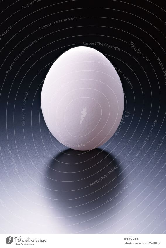 EGG graduation egg Strukturen & Formen background color is dark graduation indoor shoioting