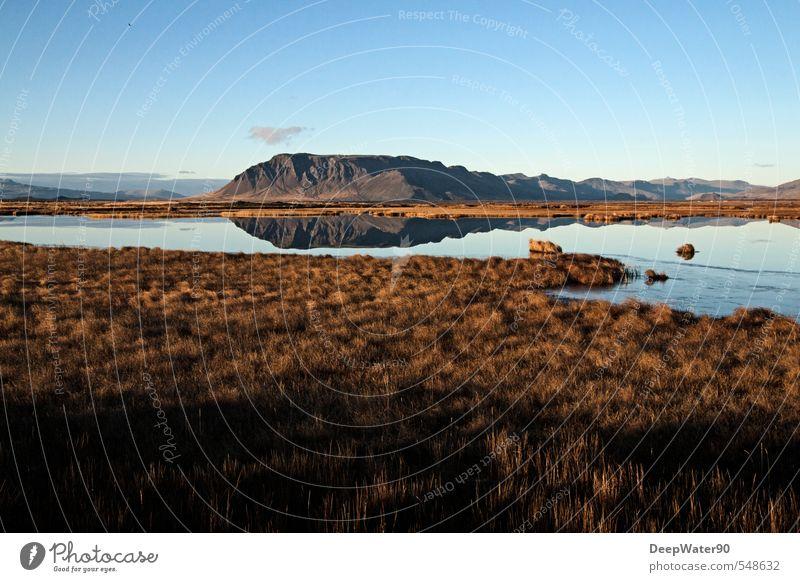 Unendlichkeit Umwelt Natur Landschaft Urelemente Erde Luft Wasser Himmel Herbst Schönes Wetter Pflanze Gras Moos Wildpflanze Wiese Hügel Felsen Berge u. Gebirge