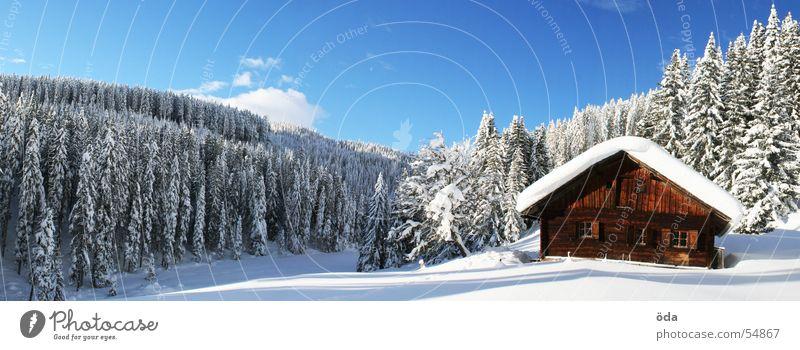 Hüttenpanorama Winter Wald Baum Schnee kalt Tiefschnee Panorama (Aussicht) Alm Sonne groß Panorama (Bildformat)
