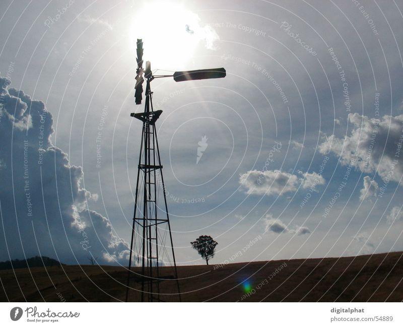 WindStilLeben Baum Sonne Wolken Berge u. Gebirge neu Australien Linse Blendenfleck Mühle Seeland