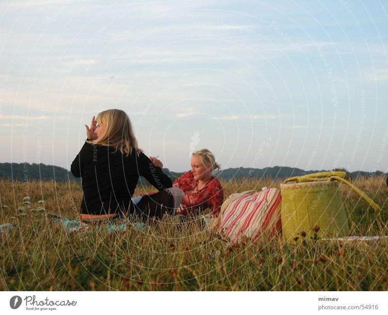 wiesenvergrillung Frau Himmel Blume grün Wiese Gras Dänemark Tasche Bornholm