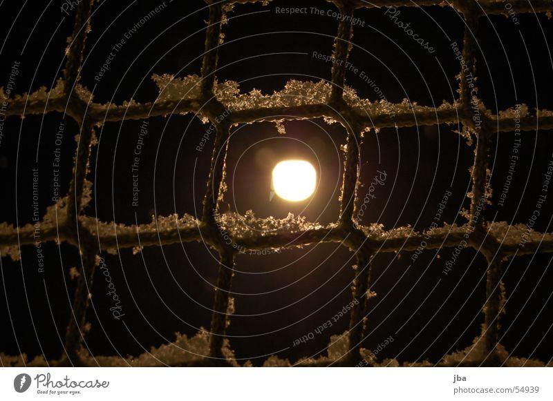 Schneenetz Neuschnee Pulverschnee frisch Seil Schnur kariert Quadrat Barriere Lampe Licht Nacht dunkel spät Netz hell Punkt Lichterscheinung Beleuchtung
