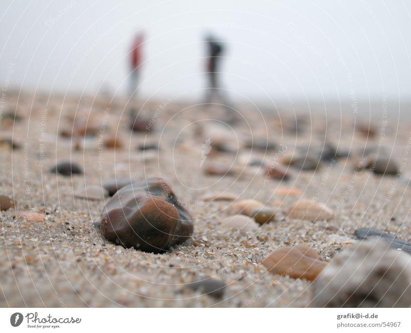 sand am strand Mensch Meer Winter Strand Stein Paar Sand paarweise mehrere nah tief