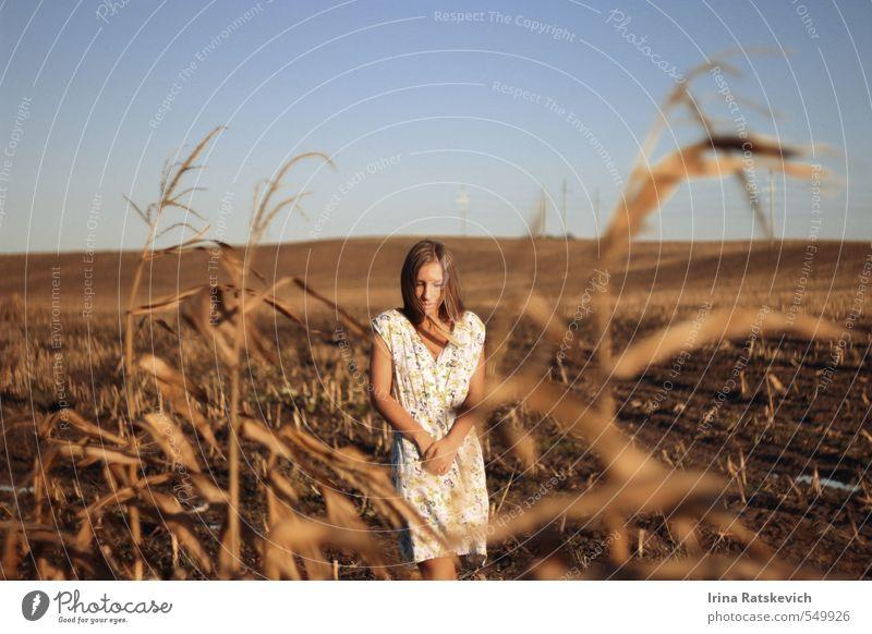 schönes Mädchen auf dem Herbstfeld Junge Frau Jugendliche Haare & Frisuren Gesicht Arme Hand 18-30 Jahre Erwachsene Natur Landschaft Erde Himmel Sonnenlicht