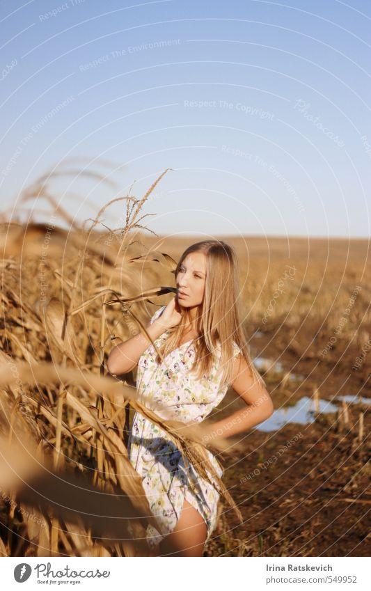 Mensch Himmel Jugendliche schön Hand Junge Frau Landschaft 18-30 Jahre Gesicht Erwachsene Herbst Haare & Frisuren natürlich Beine Horizont träumen