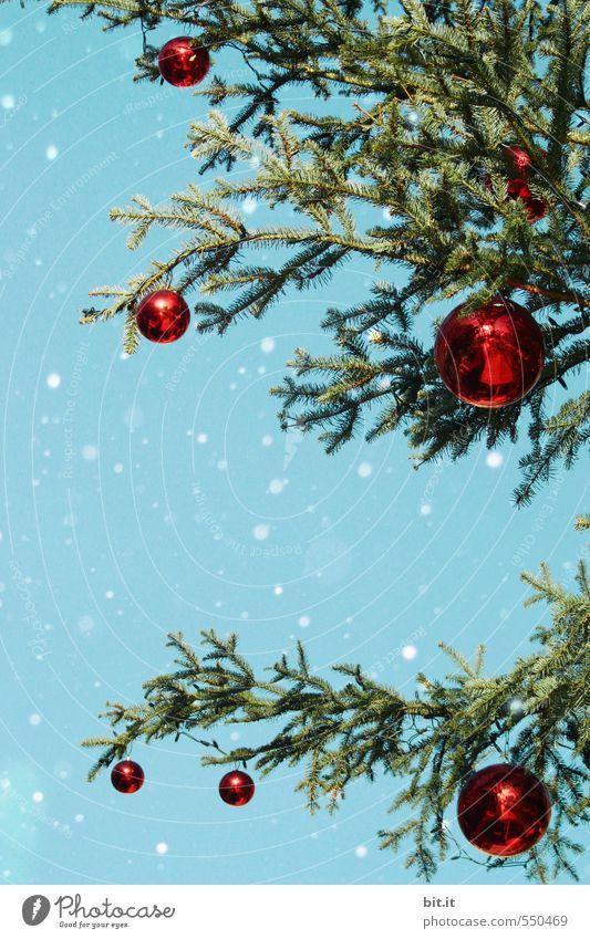 Oh Tannenbaum Himmel blau Weihnachten & Advent grün rot Winter kalt Schnee Feste & Feiern Stimmung Schneefall glänzend Dekoration & Verzierung rund Jahreszeiten Kitsch