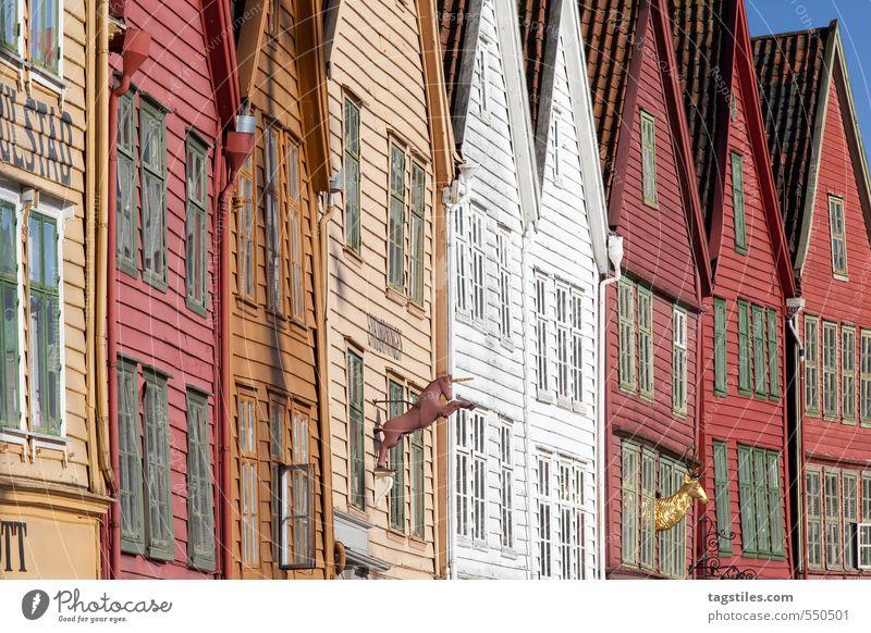 NYHAVN, BERGEN Ferien & Urlaub & Reisen Stadt Reisefotografie Fassade Stadtleben Europa Kultur Neigung Postkarte Hafen Vergangenheit Tradition Altstadt Norwegen Holzhaus Bergen
