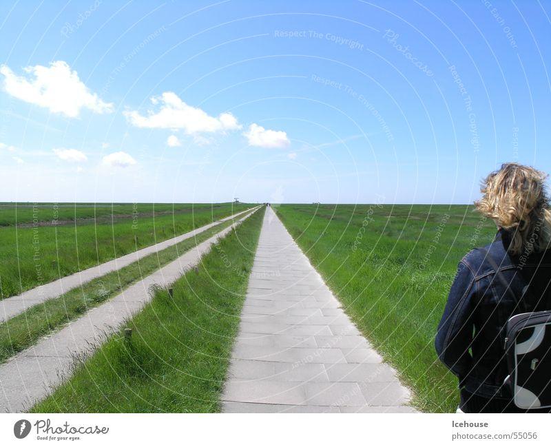 hinterm Horizont gehts weiter... Unendlichkeit wweg Straße Ferne Himmel plattenweg