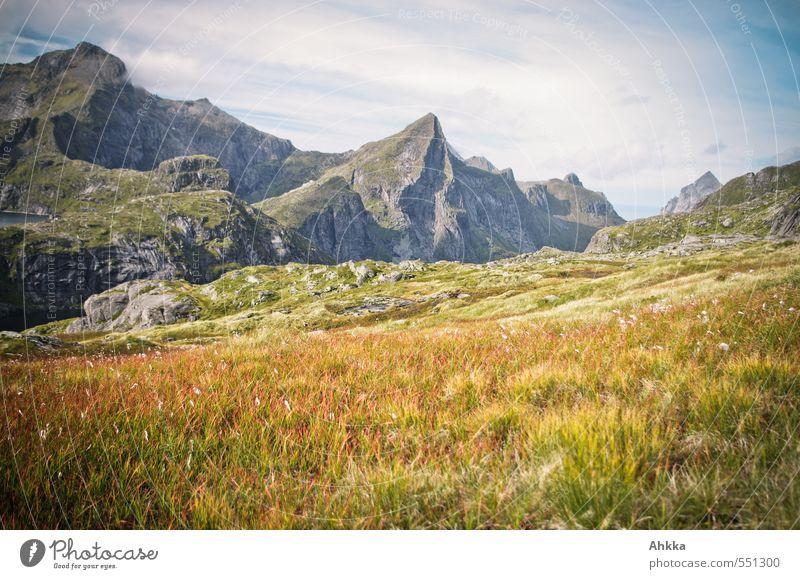 Märchenwelt Himmel Natur Ferien & Urlaub & Reisen Pflanze Landschaft Ferne Berge u. Gebirge Gras Wege & Pfade Denken Freiheit Stimmung träumen wandern