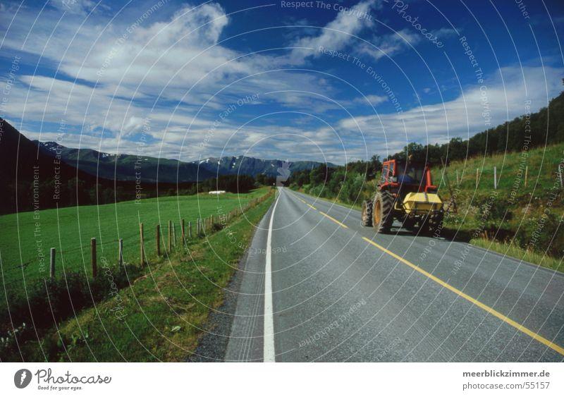 Landwirtschaft Traktor Feld Wiese grün Norwegen Lofoten Mittellinie Wolken Zaun Streifen alt Blauer Himmel Berge u. Gebirge Straße Grenze Linie