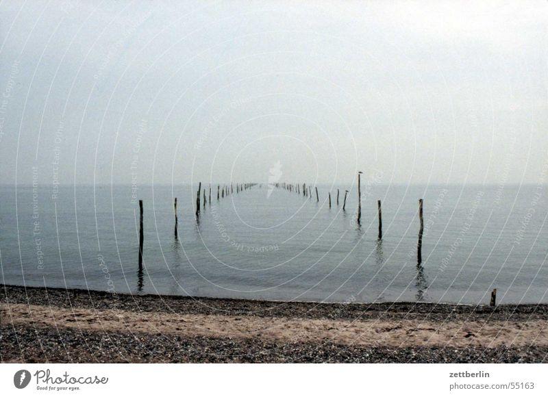 Tag am Meer Horizont Strand Unendlichkeit Einsamkeit Reuse Windstille ruhig grau Ferne möve blau-grau