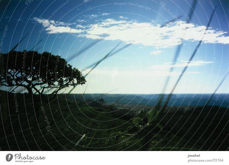 brasilien_004 blau Ferne Urwald Brasilien Amazonas