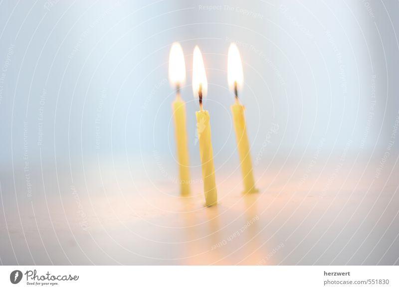 happy birthday Feste & Feiern Kerze Gefühle Freude Glück Fröhlichkeit Geburtstag Happy Birthday Farbfoto Innenaufnahme