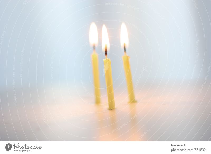 happy birthday Freude Gefühle Glück Feste & Feiern Geburtstag Fröhlichkeit Kerze Happy Birthday
