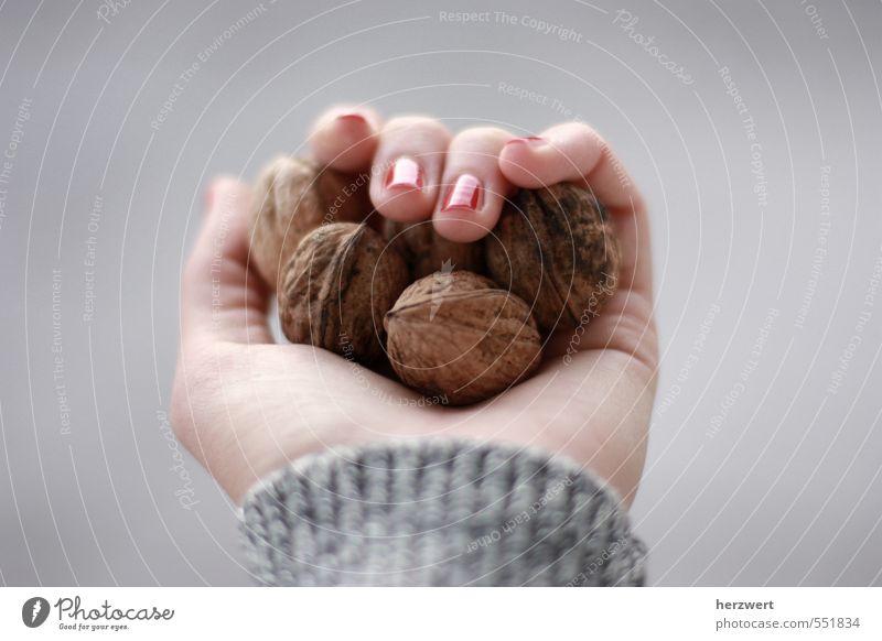 Nüsse für Aschenbrödel Lebensmittel Essen Hand Walnuss Nuss festhalten Farbfoto