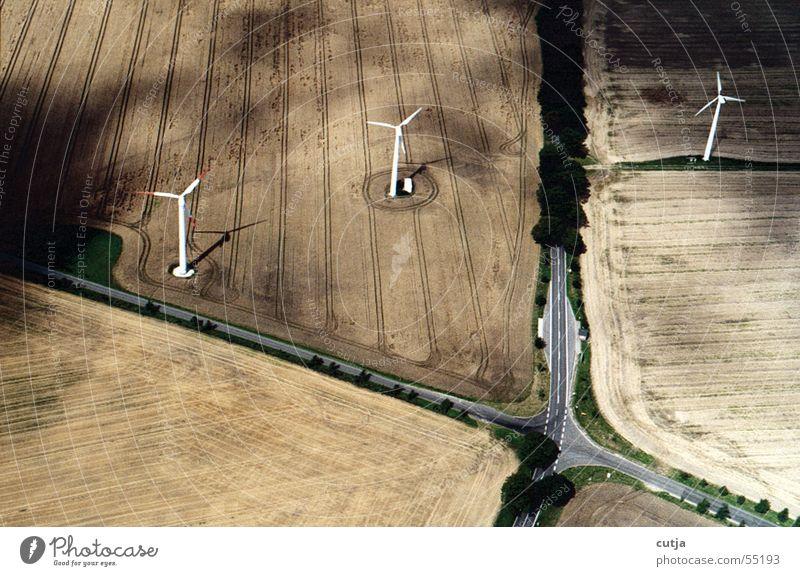 windstill Straße Vogel Feld Mischung