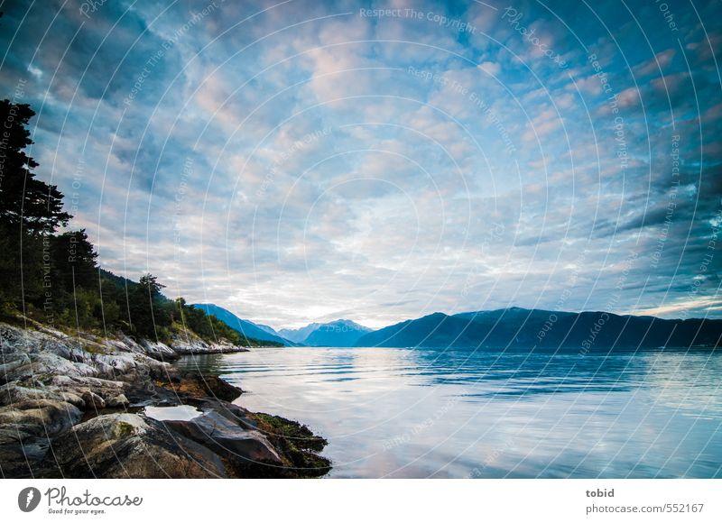 Ein Abend am Fjord Himmel Natur blau Wasser Pflanze Sommer Baum Landschaft Wolken schwarz Ferne Wald Berge u. Gebirge Küste Freiheit grau