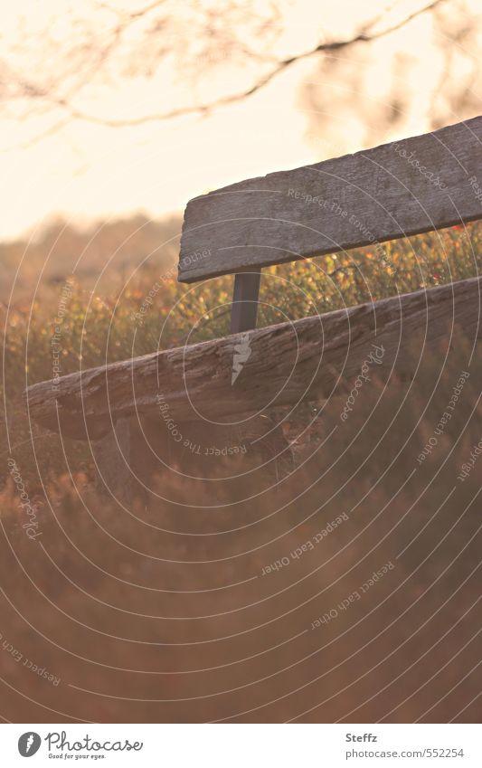 Eine verlassene Sitzbank in der Novembersonne Heidestille Heidestimmung Stille Novemberblues Melancholie melancholisch Nostalgie stiller Moment herbstliche Ruhe