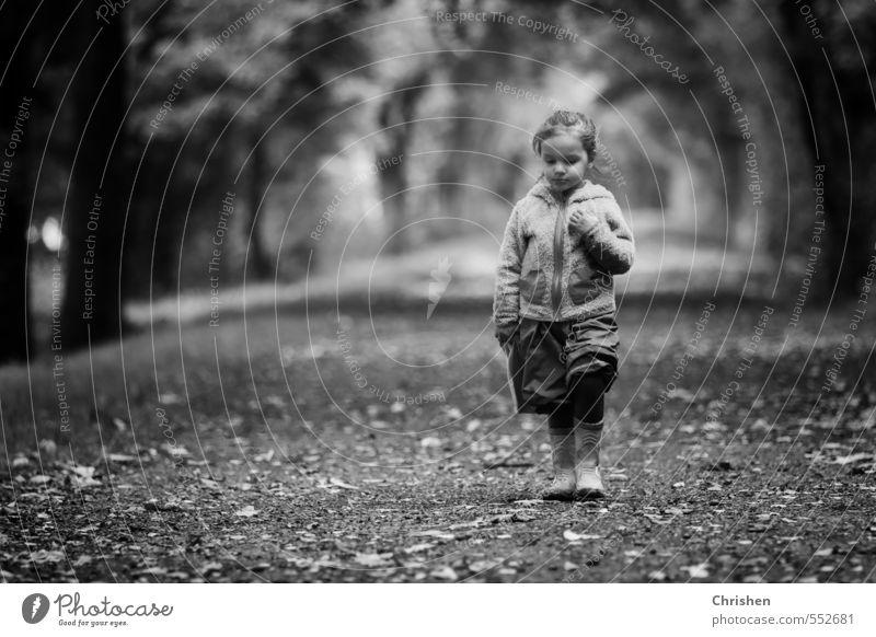 In Gedanken Mensch Kind Natur Erholung ruhig Mädchen Wald Traurigkeit feminin Herbst Bewegung Wege & Pfade Denken natürlich Gesundheit gehen