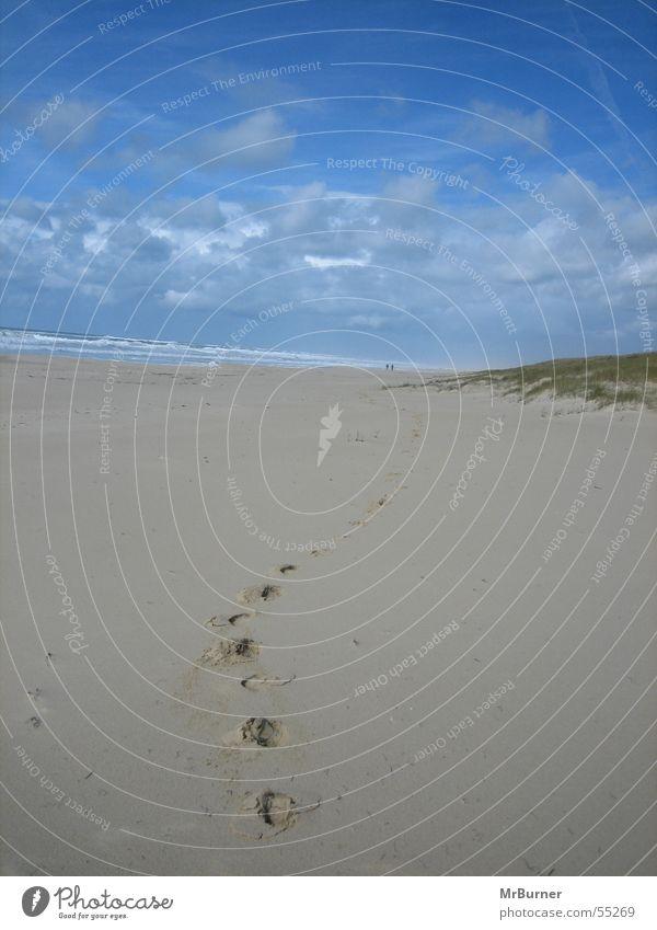 Der Weg Meer Strand Wege & Pfade Spuren