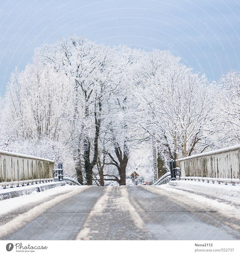 Wetter | Frische Luft Umwelt Natur Landschaft Winter Schönes Wetter Eis Frost Schnee kalt Straßenbelag Glätte Brückengeländer Baum Farbfoto Außenaufnahme