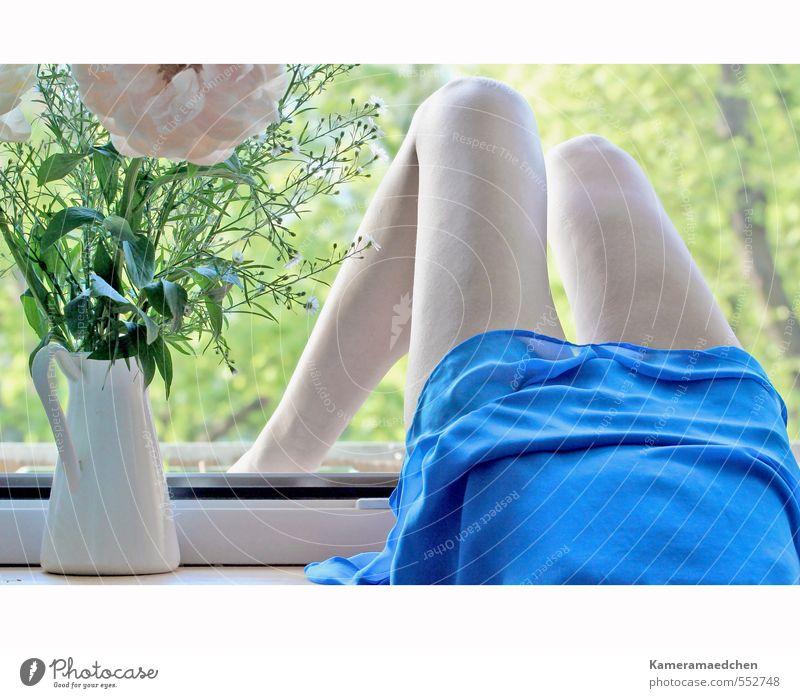 Frühling Mensch Frau blau schön Baum Erholung Blume Erwachsene Fenster feminin Denken Glück natürlich liegen Stimmung Körper