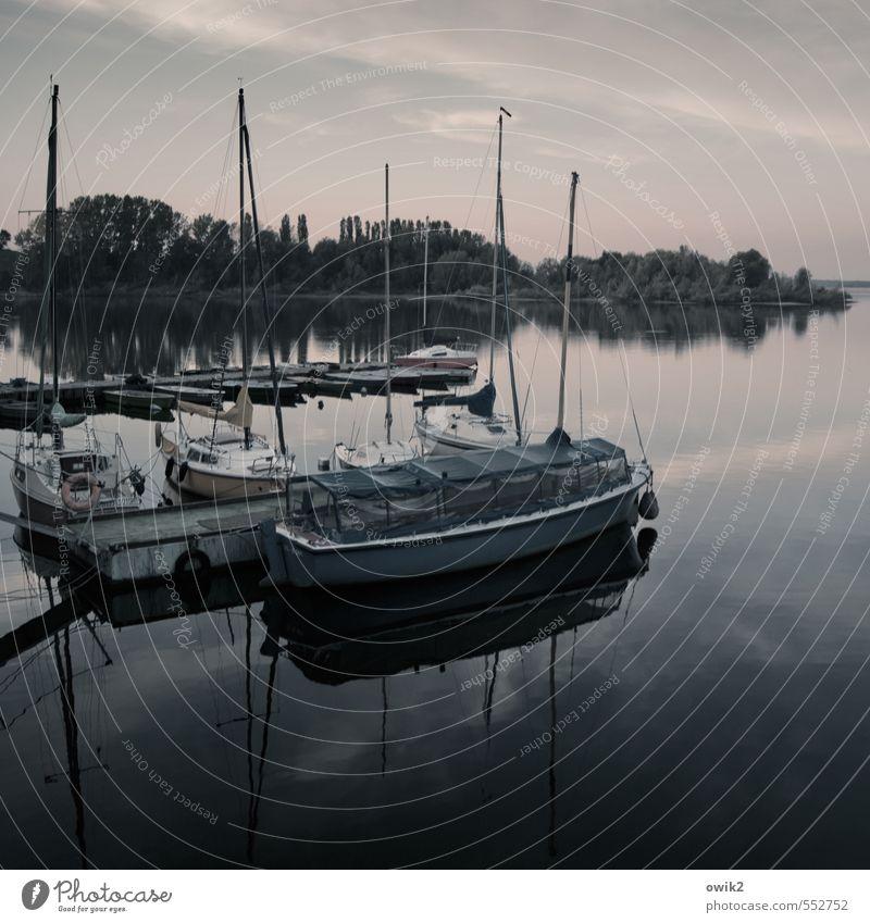 Heimathafen Wasser Himmel Wolken Horizont Klima Wetter Schönes Wetter Seeufer Bucht Insel Schifffahrt Binnenschifffahrt Sportboot Jacht Segelboot Hafen