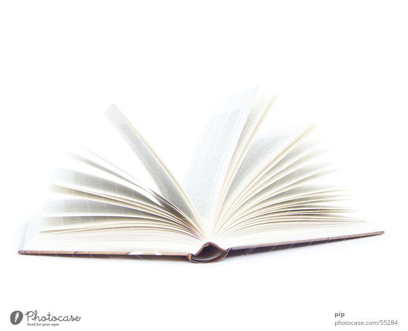 Vielseitig Buch Literatur Roman aufschlagen aufgeschlagen lesen gelehrt vorlesen Studium Bildung weiß Überbelichtung lernen Kultur Entertainment Seite blättern
