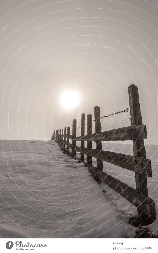 Vor oder hinter dem Zaun? Himmel Winter kalt Schnee Herbst Holz braun Nebel leuchten Zaun Grenze Holzzaun