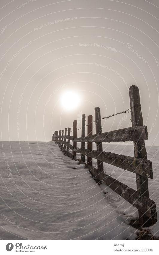 Vor oder hinter dem Zaun? Himmel Winter kalt Schnee Herbst Holz braun Nebel leuchten Grenze Holzzaun