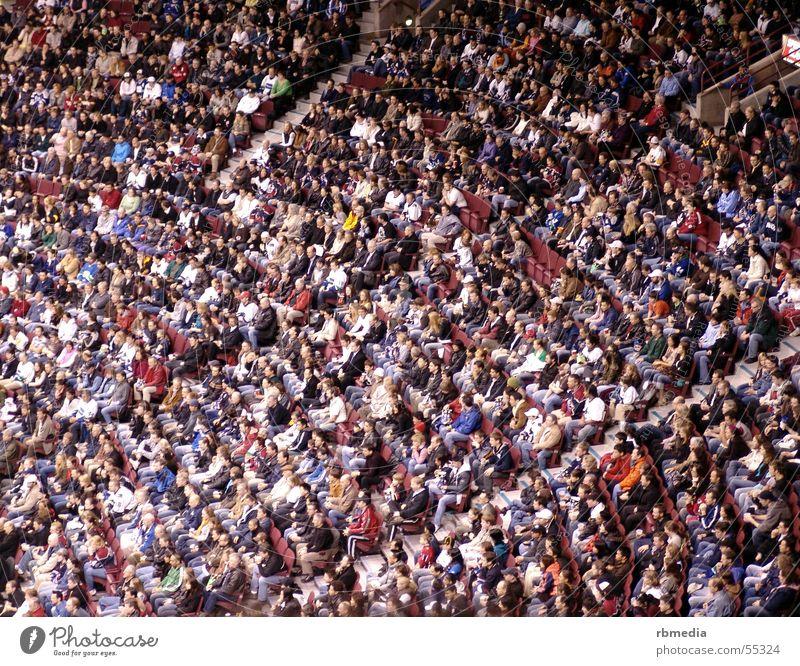 crowd Publikum Mensch Menschenmenge sitzen Sport