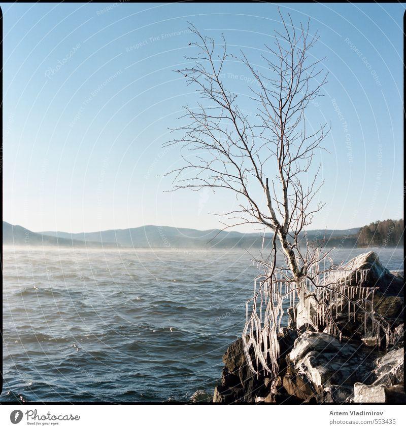 Himmel blau weiß Wasser Farbe Pflanze Baum Landschaft kalt Herbst Stein Felsen Horizont braun Luft Eis