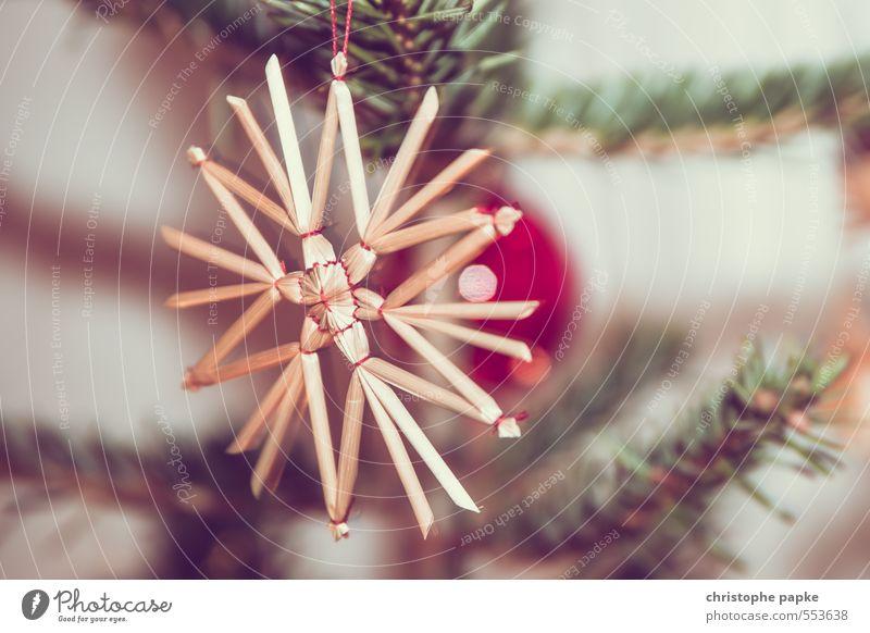 Star Baum Weihnachtsbaum Tannenzweig Dekoration & Verzierung Kitsch Krimskrams hängen Stern (Symbol) Strohfiguren strohstern Weihnachten & Advent