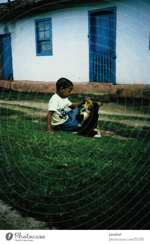brasilien_043 Kind weiß blau Hund braun