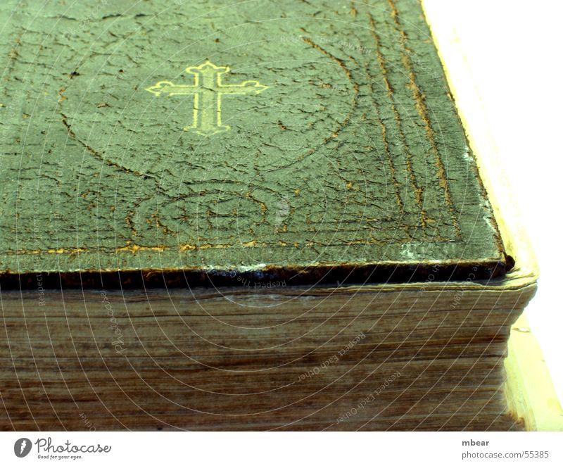 Das Buch der Bücher alt Religion & Glaube Rücken Papier heilig Riss Christentum Bibel Katholizismus Protestantismus Testament