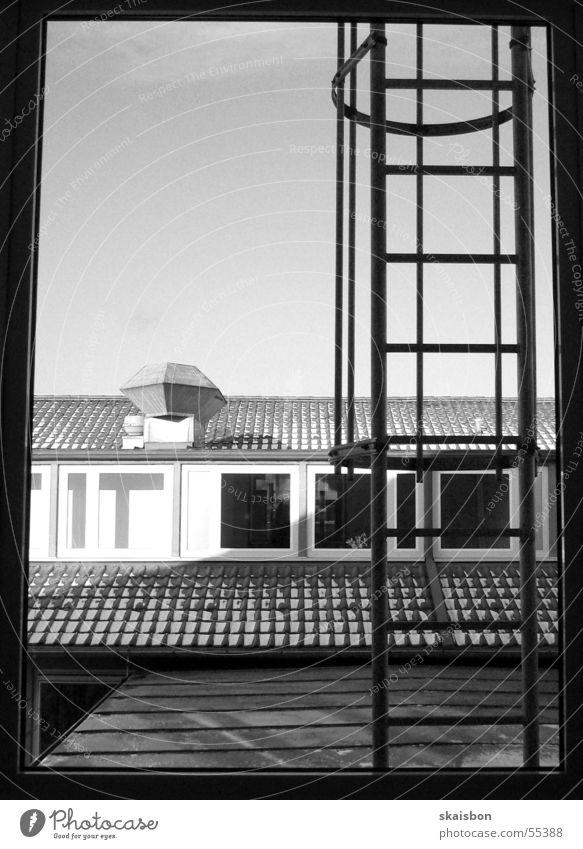 ...leiter ruhig Haus Leiter Fenster Dach Schornstein Backstein schwarz Feuerleiter Rettungsleiter Dreiteilung Geometrie wahlpflicht-foto s/w black Rahmen