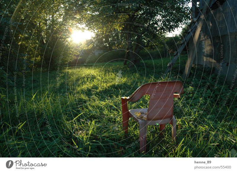 Ein Platz an der Sonne Baum Sonne Wiese Lichtschein Gartenstuhl Plastikstuhl