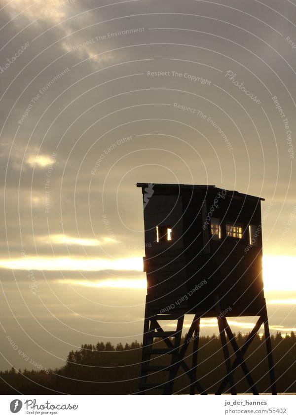 Jägerstand Himmel Sonnenuntergang Wald Gegenlicht jägerstund hunter sky clouds forest back licght Jagd