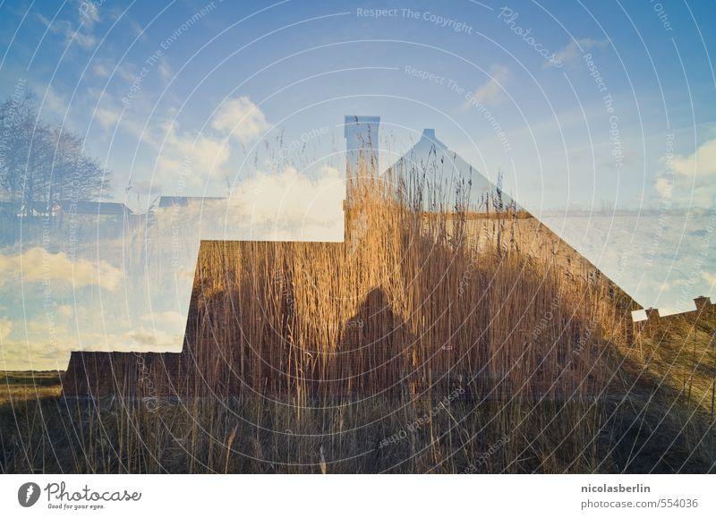 Rømø | Haus am Deich Himmel Natur Ferien & Urlaub & Reisen Umwelt Küste Innenarchitektur Garten Freizeit & Hobby Fassade Feld Wohnung Häusliches Leben Sträucher