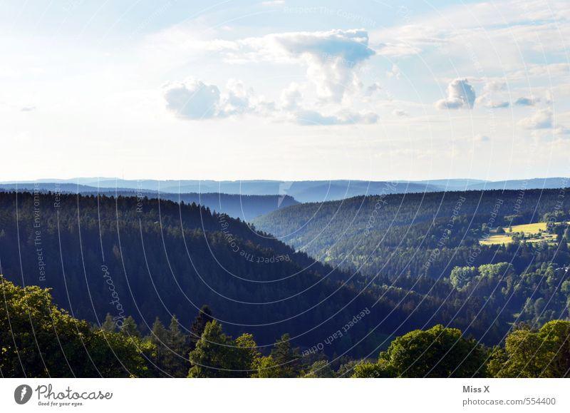 Schauindenschwarzwald Ferien & Urlaub & Reisen Ausflug Ferne Berge u. Gebirge wandern Natur Landschaft Himmel Sommer Schönes Wetter Nebel Baum Wald Hügel