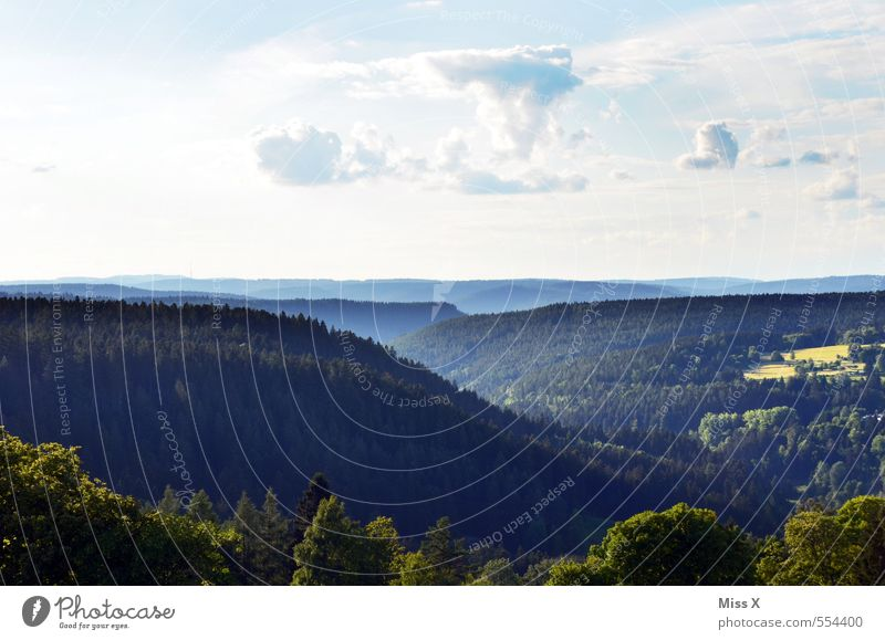 Schauindenschwarzwald Himmel Natur Ferien & Urlaub & Reisen Sommer Baum Erholung Landschaft Ferne Wald dunkel Berge u. Gebirge Freiheit Horizont Stimmung Idylle